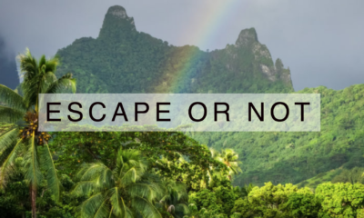banner_escape_or_not-400x240